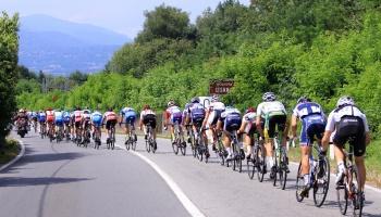 Trofeo Almar